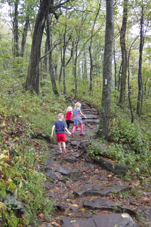 Kids Trail1
